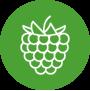 iconcina_piccoli-frutti